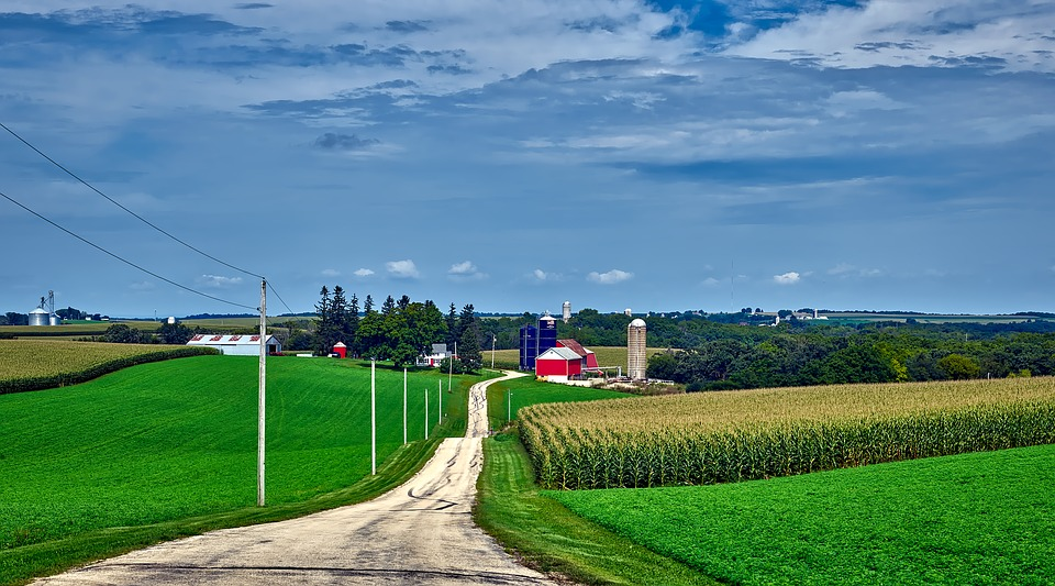 wisconsin, farm, view, land