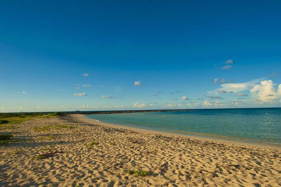 bahamas, beach, sand, sun, paradise, tropical