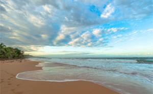 beach near bocas del toro panama