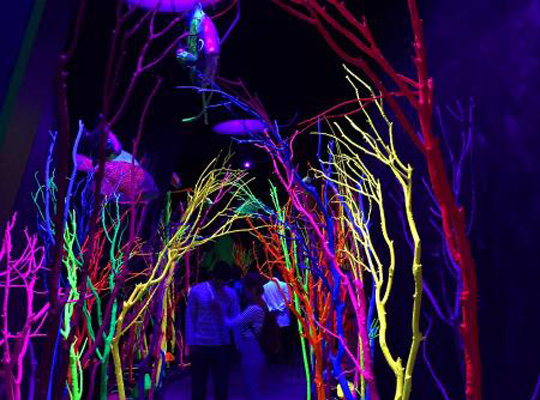 inside of meow wolf in Santa Fe new mexico