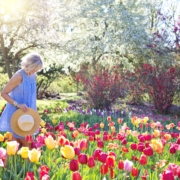 Young woman walking in a field of tulips